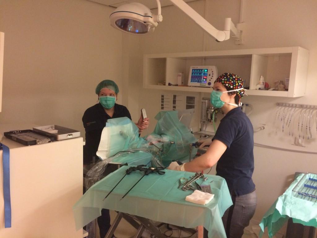 laparoscopie kat